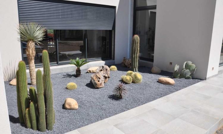 Jardin sec de cactus et yuccas exceptionnels for Entretien jardin particulier 95